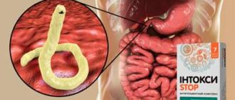 Препарат Интоксистоп от паразитов.